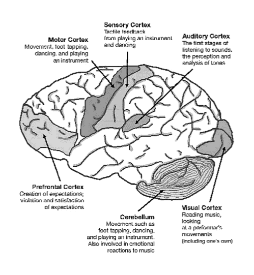This is your brain on music 270